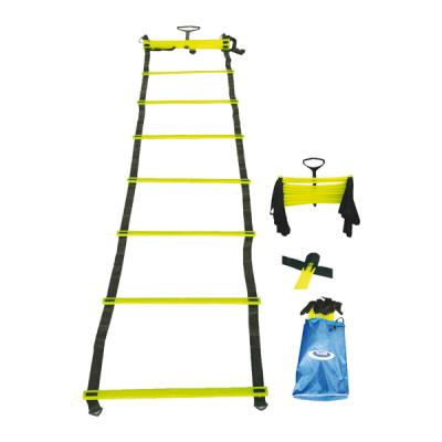 Liggende ladder